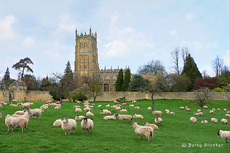St James in Summer with sheep